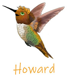 Howard | Holly The Hummingbird | Children's Picture Book  | Amazon & Amazon Kindle