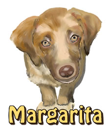 Margarita | Agador and Mila's Jungle Adventure | Children's Picture Book  | Amazon & Amazon Kindle