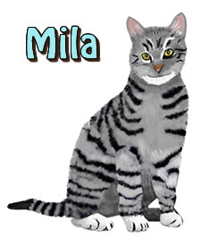 Mila | Agador and Mila's Jungle Adventure | Children's Picture Book  | Amazon & Amazon Kindle